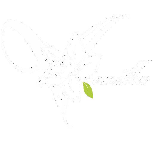 Restaurace Vanilla